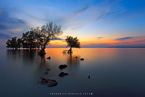 blue trees nature water sunrise bay seascapes philippines mangrove hour elsalvador oriental beau mindanao misamis oute panguil