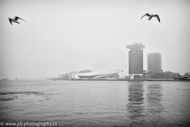 Foggy (+1)
