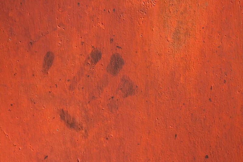 84 Rusty Color Metal texture - 4 # texturepalace