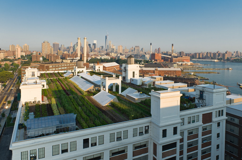 The Brooklyn Grange Rooftop Farm at The Brooklyn Navy Yard… | Flickr