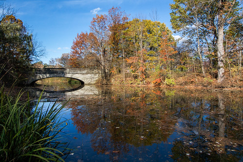 autumn trees ny newyork reflection fall dan nature water landscape outside outdoors scenic historic genesee nys rochesterny westernnewyork wny monroecounty geneseevalleypark fredericklawolmsted dangler redcreek dandangler