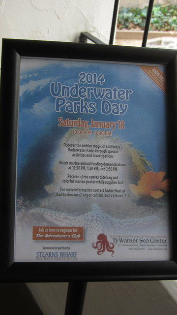 IMG_6257 ty warner underwater parks day january 18 2014