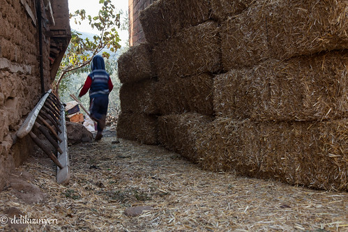 boy turkey village child running ladder hay bale haybale iznik muskule
