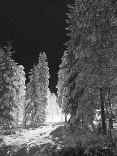 Vinter Kilsbergen   by StefanOlaison