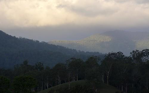 forest landscape countryside rainforest australia nsw cloudscape lateafternoon northernrivers tweedrange borderrangesnationalpark richmondvalley barmountain nationalparksandnaturereserves