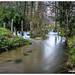 Senda do río Caselas