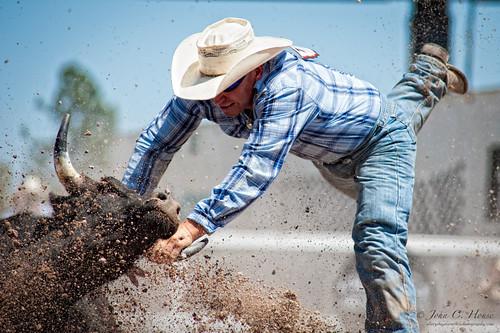 nikon cowboy rodeo nik cheyenne bulldogging frontierdays everydaymiracles d700 johnchouse