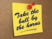Take the Bull by the Horns | by One Way Stock
