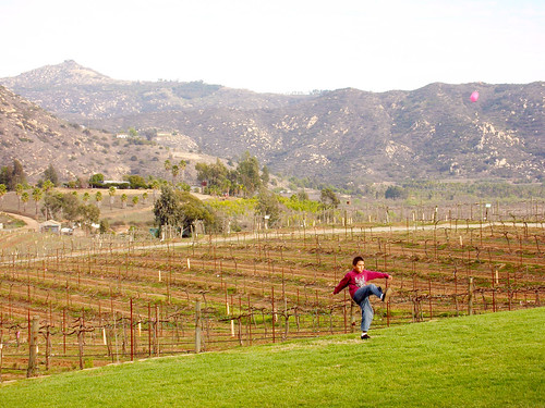 kicking a futbol in the vineyards | by eschipul