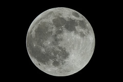 full moon   by iPhotograph