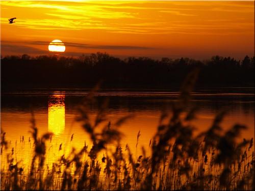 lake geotagged deutschland see sonnenuntergang olympus deu schleswigholstein scharbeutz klingberg e620 geo:lat=5403063960 geo:lon=1070281510