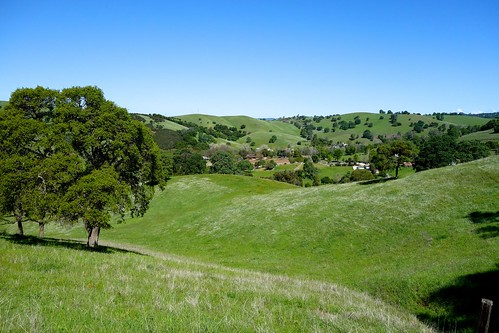california usa foothills mountains green northerncalifornia rural spring day sony bluesky hills clear pasture valley poppy poppies rolling suttercreek amadorcounty amadorcity rx100
