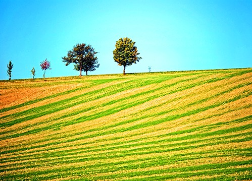 trees color germany landscape deutschland day saxony clear sachsen tobi landschaft farbe bäume allemagne germania diamondclassphotographer flickrdiamond bestcapturesaoi mygearandme