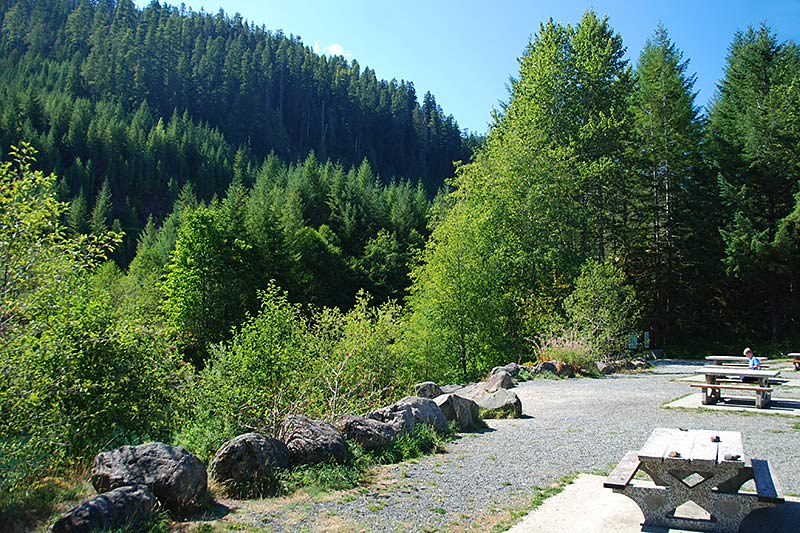 Taylor River Rest Area, Pacific Rim Highway 4, Vancouver Island, British Columbia, Canada