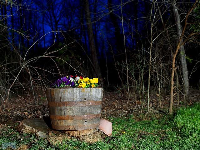 Night light (2 sec exposure)