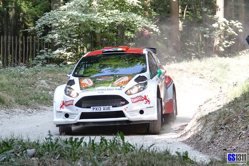 2013 Ford Fiesta R5 Photo