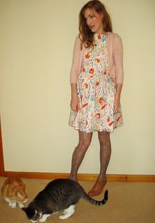 Catnap Dress Contest