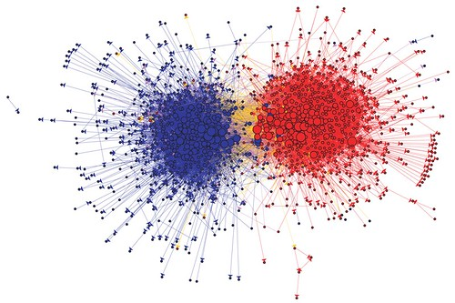 Lada Adamic's famous visual of Democrat and Republican blogs during the 2004 US election | by speedoflife