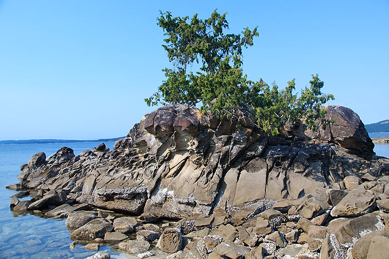 Pilkey Point on Thetis Island, Gulf Islands, Georgia Strait, British Columbia, Canada