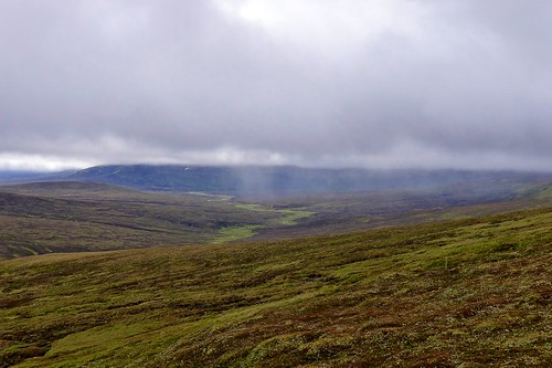 Showers over the upper Feshie | by Nick Bramhall
