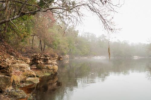 fog river rocks jasper unitedstates florida liveoak suwannee suwanneeriver