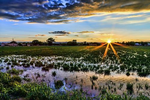sunset newmexico landscape farm albuquerque nm lospoblanosfarms grantcondit
