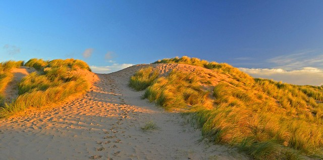 Early morning at the dunes