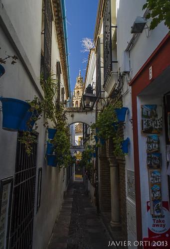 Calleja de Las Flores (Córdoba, España)   by Javierorp