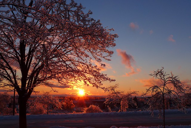 yet another ice storm sunset