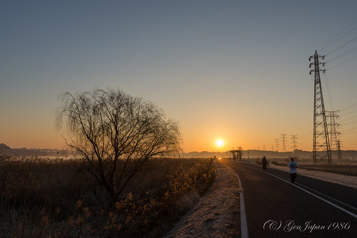 2014 千葉県 太陽 手賀沼 日の出 朝日 柏市 風景 日本 朝焼け nikond600 chiba japan landscape sun sunrise twilight 空 sky pwwinter clear day teganuma carlzeiss distagont225 zf2