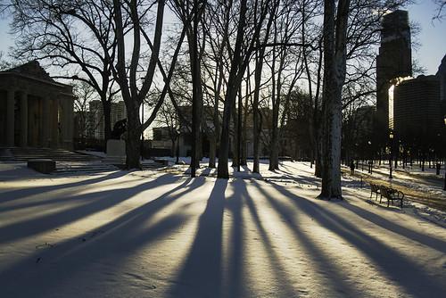 city morning trees winter shadow urban usa sun sunlight snow philadelphia america sunrise unitedstates pennsylvania pa philly rodin thethinker benfranklinparkway 215 rodinmuseum cityofbrotherlylove benjaminfranklinparkway