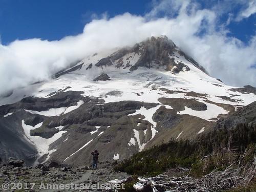 Mt. Hood from Gnarl Ridge, Oregon
