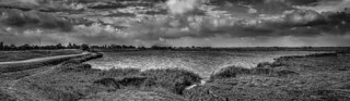 Panorama North Holland | by claude_porignon (BE)