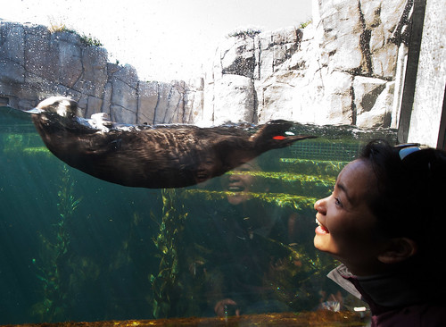 Cindy & Otter 02