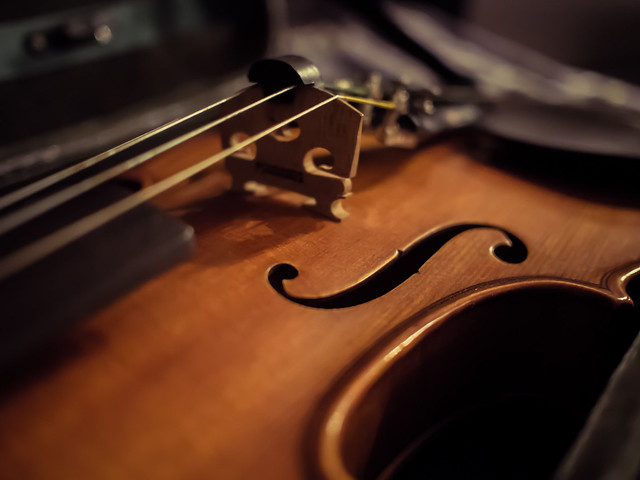 Day 31: Violin F-Holes