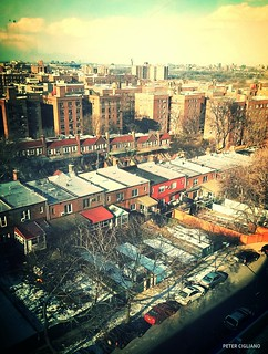 Forest Hills Rooftops