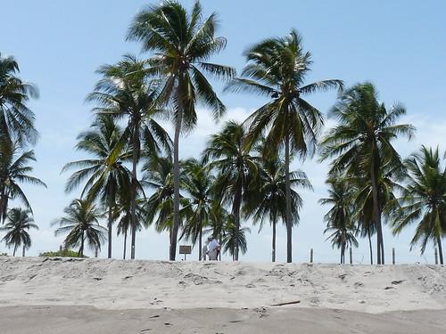 Corral de Mulas Beach and Iisland, Usulután, El Salvador