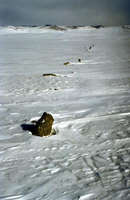 MONGOLIA 1994 02-0003