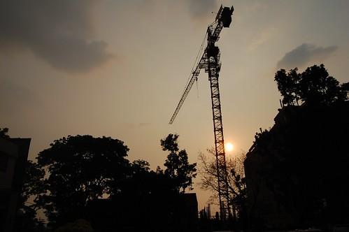 sunset shadow sky sun crane