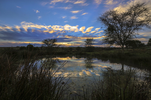 sunrise southafrica cloudy wetlands mpumalanga wetlandssunrise kuduranch kuduprivatenaturereserve kudugameranch wetlandshut 6dsouthafrica