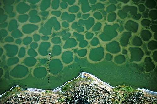 Spotted Lake (Klikuk Lake) near Osoyoos, South Okanagan Valley, British Columbia, Canada
