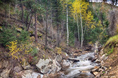 colorado creek river water flowing stvraincreek canyons bouldercounty aspen trees autumn fall foliage season seasons nature bright colors beautiful backcountry jamesinsogna