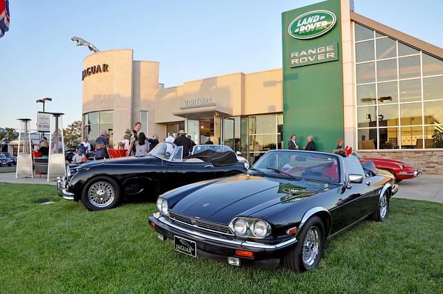 Ventura Jaguar