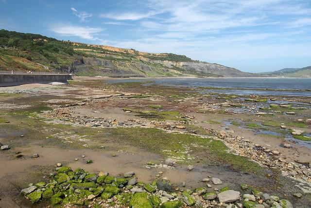 Looking east from Lyme Regis