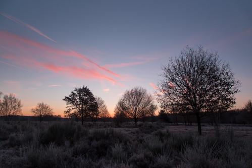 deutschland nrw rheinland wahnerheide sonnenaufgang verlaufsfilter day cloudy frost