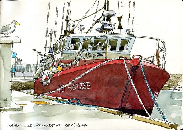 Lorient - Guillemot III - 08 02 2017