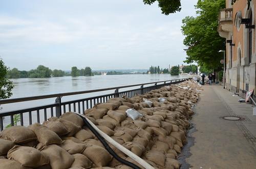 9024493778 08b1b7813c Elbehochwasser   Juni 2013