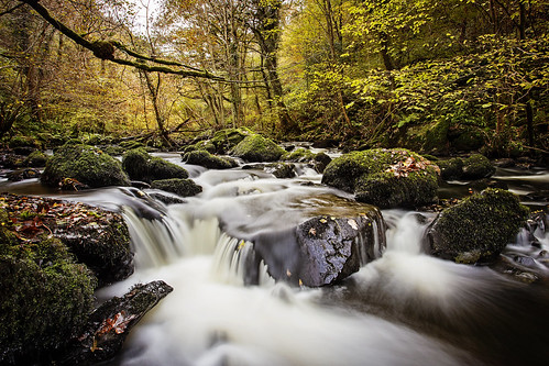 longexposure november autumn trees colour water leaves forest river rocks fast filter nd
