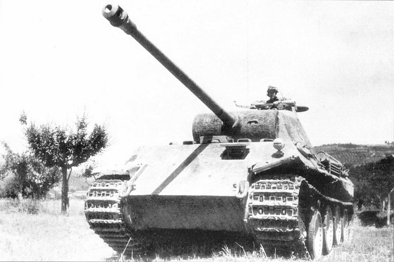 PzKpfw V (12)