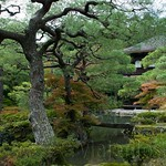 Kyoto-014